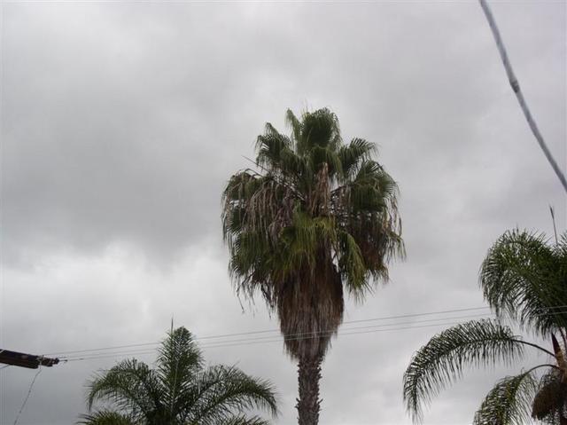 Rainydaysda